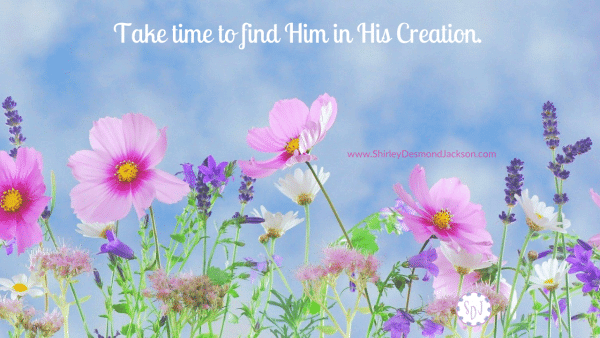 When I take the time to consider His creation, I see His amazing qualities and this leads me to praise Him.