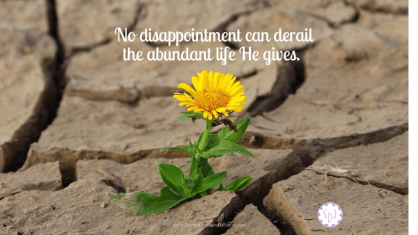 Unrealized hopes usher in disappointments. But disappointments do not derail the abundant life Jesus gives.