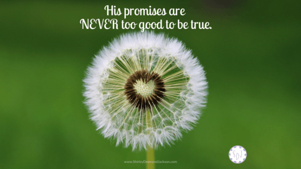 When-Promises-Seem-Too-Good-To-Be-True